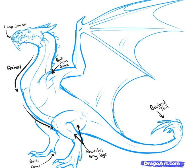 Для худого дракона можно